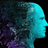 Rolling Brain Stimulation by Brain Modul [Forest - , Night Psy Set 08.2018]