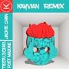 Tiësto & Dzeko feat. Preme & Post Malone – Jackie Chan (KAYVIAN Remix)