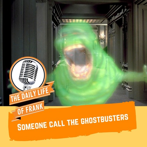 Someone Call the Ghostbusters (The Daily Life of Frank)