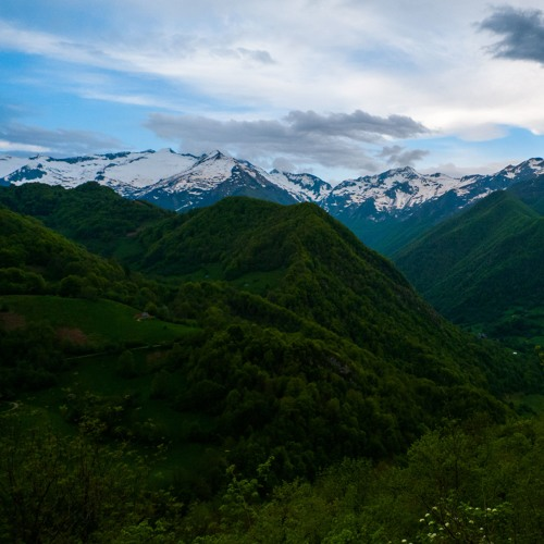 Dawn Chorus high in the French Pyrenees