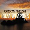 Orson Welsh Vs. Purple Disco Machine - I Am Gonna Diss That F#ckin Male Stripper (Ibiza Weapon 2018)