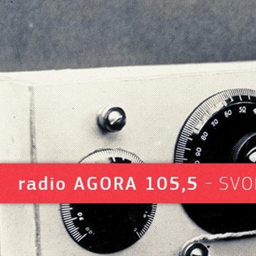 "Radio Agora: ""Panoptikum Bildung"""