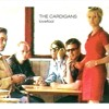 The Cardigans - Lovefool - St&Lo Project REMIX