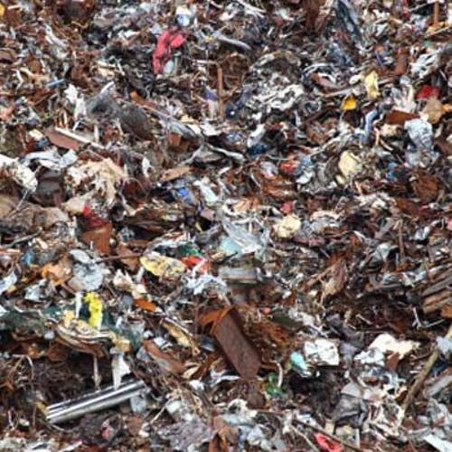 Recycling Bin: 379g