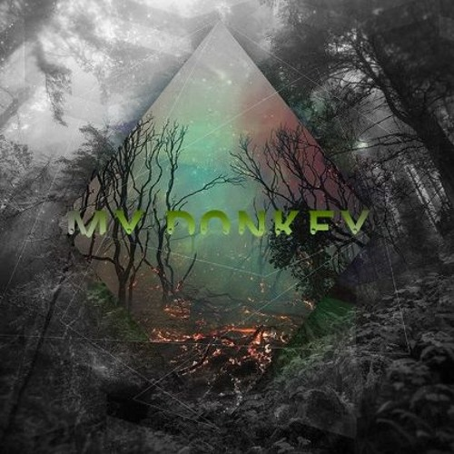 SlowP - My Donkey (Original Mix)FREE DL