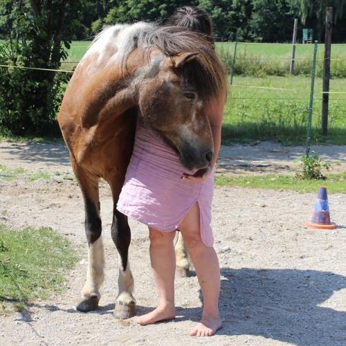 Ein Pferdemensch braucht nur eine Fähigkeit