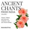 03 Mantra For Overcoming Illness And Pain - Sri Sudarshanashtakam