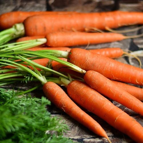 Puolustusvoimista ja kasvissyönnistä