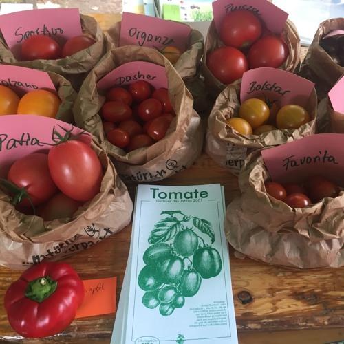Der Tomatentag