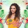 Download SUMMER BREEZE - Caribbean Mix by Lisa Rose - D&L BEATS Mp3