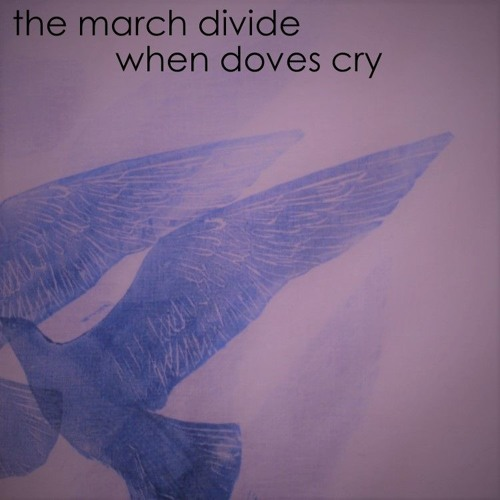 When Doves Cry (Cover)