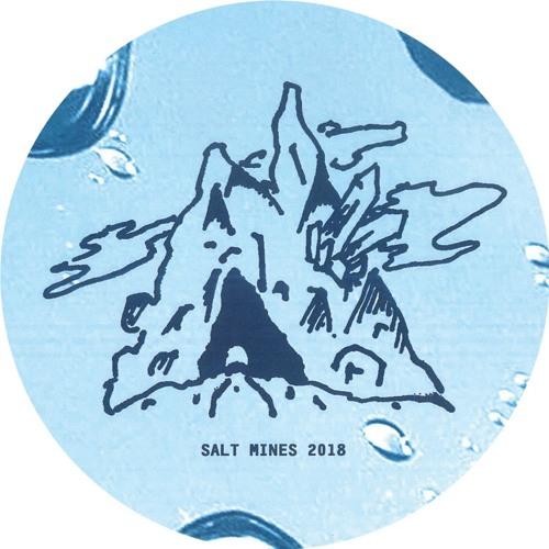 SALT009 Roza Terenzi - Mood EP