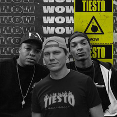 Tiësto vs. Snoop Dogg x Dr. Dre - The Next Episode (Müdy Mashup)