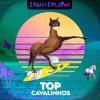 É Pau É Play #11 - Top Cavalinhos