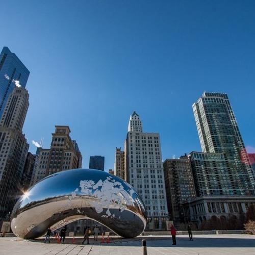 The Chicago Bean - Чикагская фасоль