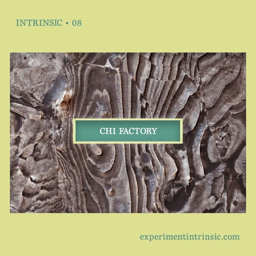 Intrinsic 08 • Chi Factory