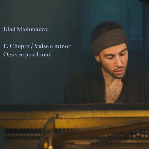 F. Chopin / Valse e minor