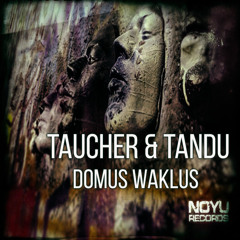 taucher & tandu    Domus Waklus