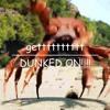 Crab Ravealovania
