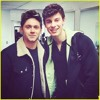 MIRRORS & MERCY - Shawn Mendes x Niall Horan (Martin Garrix Mashup)