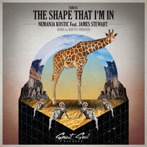 Nemanja Kostic Feat James Stewart - The Shape That I'm In (Extended Mix)
