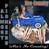 Bro Country (Ain't No Country)