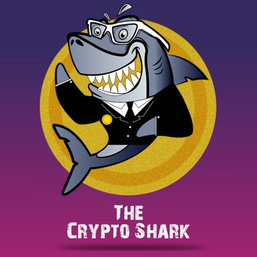 cryptocurrber bitcoin rinkos dalis