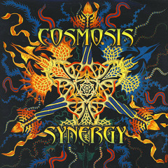 7 Down At The Crossroads - Cosmosis