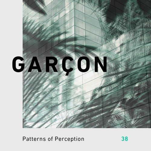 Patterns of Perception 38 - Garçon