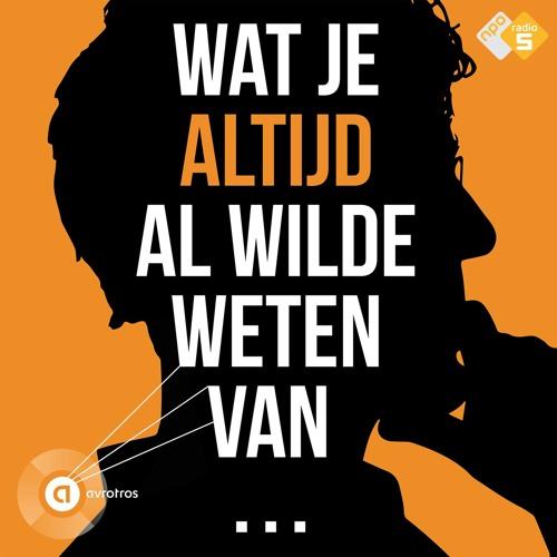 Wat Je Altijd Al Wilde Weten Van... (01) Jan Akkerman