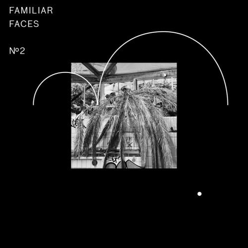 RVN015   Various Artists - »Familiar Faces Nº2«