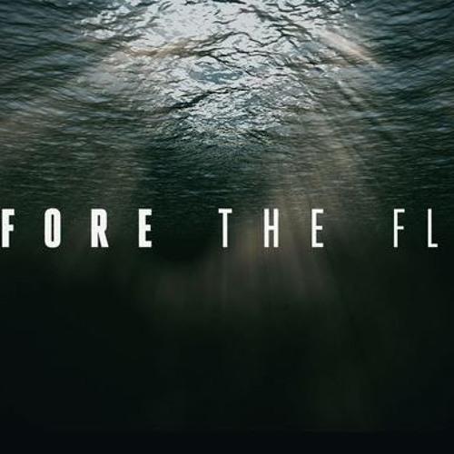 Meaningful Movies in Ridgefield, Before The Flood with Don Steinke