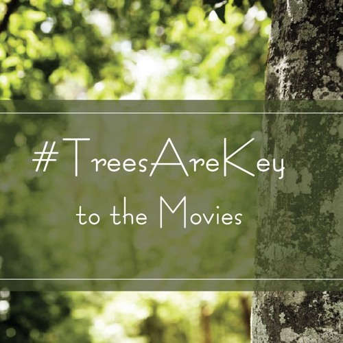 Trees Are Key to the Movies