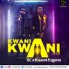 Tic X Kwame Eugene _ Kwani Kwani Pt2 Mp3