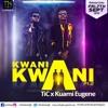 Tic Tac - Kwani Kwani ft. Kuami Eugene