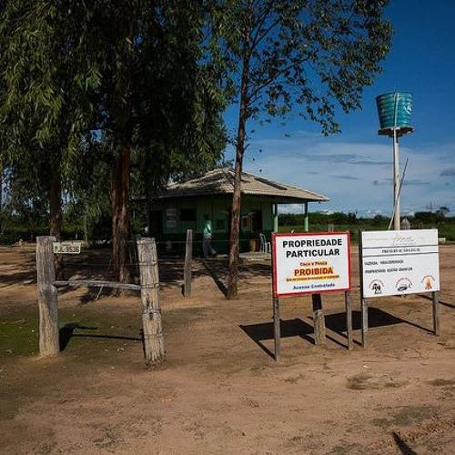 Harvard compra 300 mil hectares de terras e gera conflitos com comunidades locais
