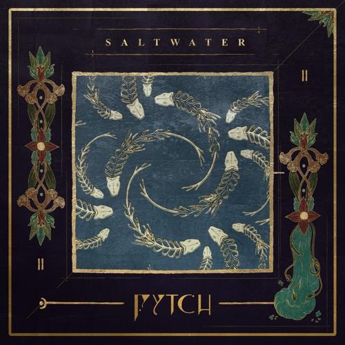 Fytch - Saltwater