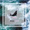 WILD LOVE James Bay Selkii Cover