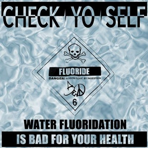 Check Yo Self (Water Fluoridation is Bad for Your Health) featuring Das EFX