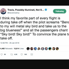 Travis McElroy - Sky Bird