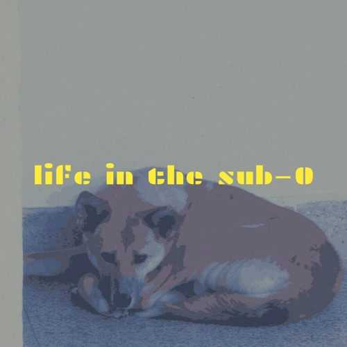 Life in the sub-zero