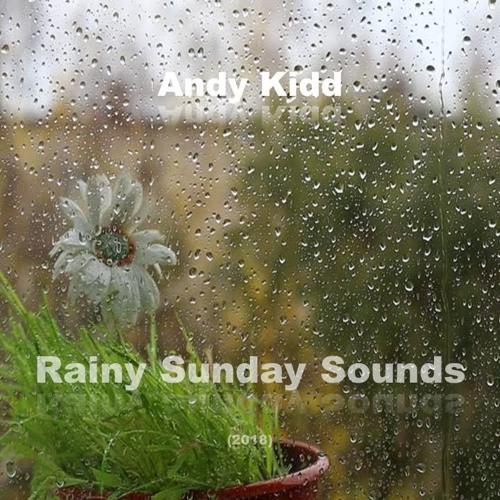 Andy Kidd Rainy Sunday Sounds 2018 By Andykiddibiza Andy Kidd