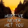 Must've Never Met You (Luke Combs Cover)