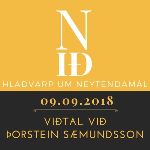 N-ið: Þorsteinn Sæmundsson
