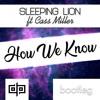 Sleeping Lion - How We Know (ft Cass Miller) (dp. Bootleg)