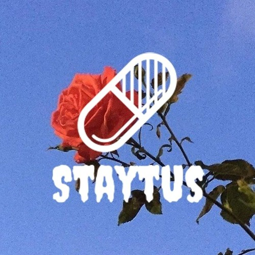 The Best Of Staytus™