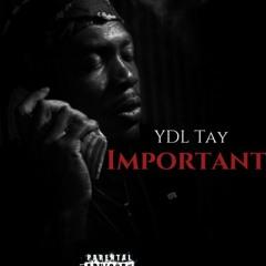 YDL TAY- Important J MARK in da beat