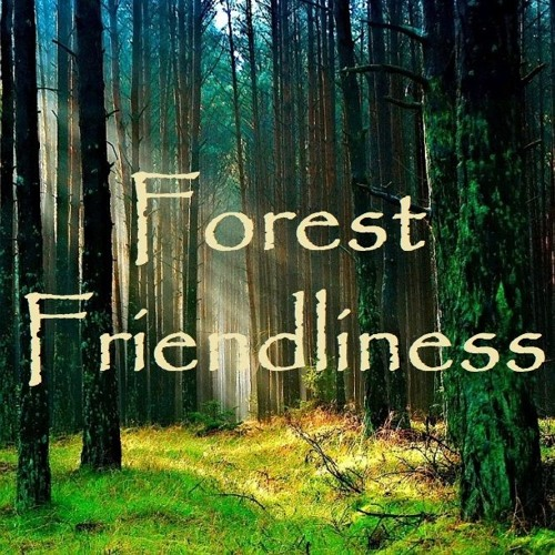 Guided Meditation on Fine Forest Friendliness