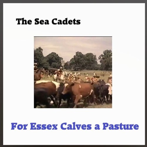 For Essex Calves a Pasture - Radio Edit