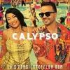 Luis Fonsi  Stefflon Don - Calypso (Acapella + Instrumental) FREE